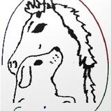 EQUICANE - gemeinsam mit den Partnern Pferd und Hund